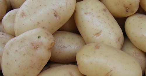 patatas viejas